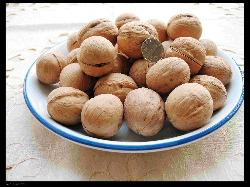 供应新疆特产新疆特产加盟农果网新疆农产品新疆特产网