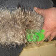貉子毛条貉子毛领雪地靴用貉子袖口图片