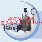 高压釜温度搅拌控制仪图片