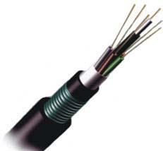 12芯光纤光缆图片