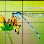 博邦城夏普液晶拼接屏国内最大直销图片
