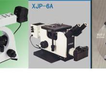 供应生物显微镜供应商