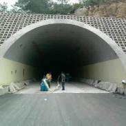 隧道抛丸机图片