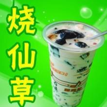 供应时尚健康饮品原味珍珠奶茶培训批发