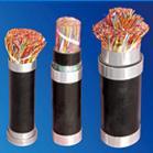 供应PVC绝缘电缆/BV电缆/YJV电缆