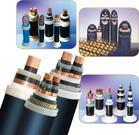 供应保定工程电缆招标电缆,保定电缆中标电缆厂家
