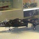 天津徘徊者战斗机模型_战斗机模型_飞机价格_航天模型_模型制作