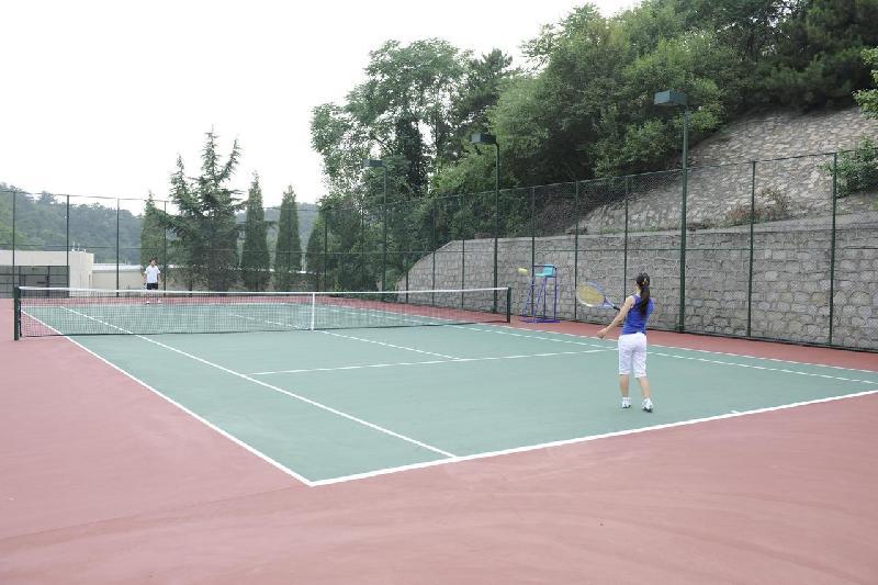 网球场地_网球场地产品中心