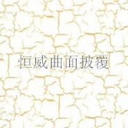 上海水转印膜图片