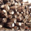 营口港原木板材进口流程手续资料图片