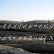 缅甸花梨木材进口流程手续资料单证图片