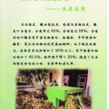 供应玉米秸秆分离机专业生产厂-泓源