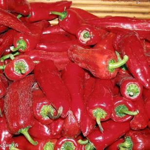 辣椒油图片