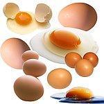 铁岭泓源专业生产蛋禽专用壳红素图片