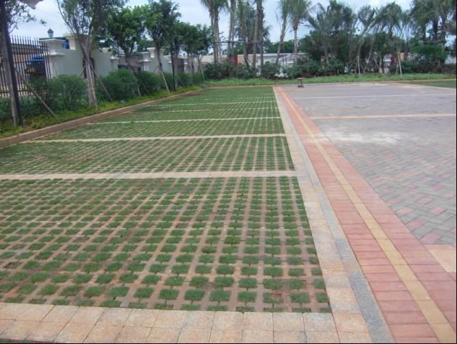 海南博泰彩砖有限公司生产供应井字植草砖 高清图片