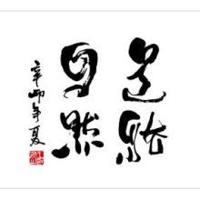 深圳有名的商业书法设计