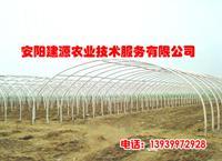 安阳市龙安区裕盛种植专业合作社