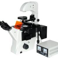 供应MF52荧光倒置显微镜