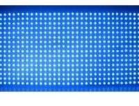 供应led单双色全彩显示屏出口商