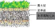 供应生态混凝土图片