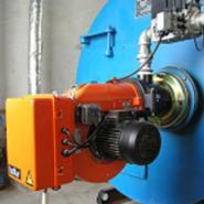 1吨卧式燃气蒸汽锅炉/锅炉供应图片