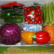 节日水果礼品卡蔬菜礼品卡礼品海鲜图片