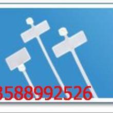 柳市标牌式尼龙扎带,标牌型尼龙扎带,其他塑料制品供应批发