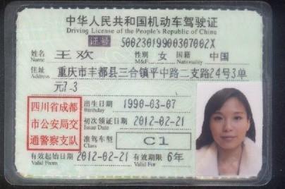 c1驾驶证照片模板