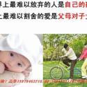 深圳平安世纪天使与常青树少儿综合图片