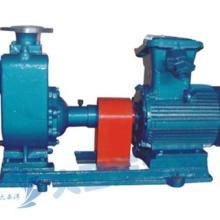 供应CYZ-a不锈钢自吸油泵,自吸泵,不锈钢自吸油泵图片