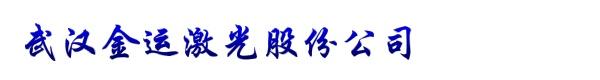 武汉金运激光股份公司
