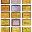 北京制作奖牌-钛金牌-木托奖牌图片