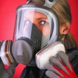 供应好用进口的喷漆防毒口罩