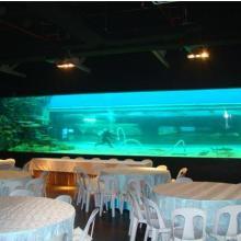 供应专业制作供应大型亚克力水族鱼缸