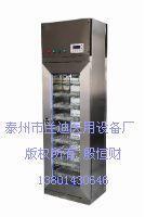 数控型医用干燥柜/器械干燥箱/干燥箱专业生产厂家