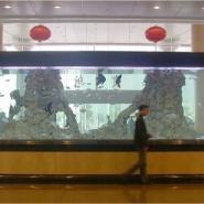 重庆海之语大中型压克力鱼缸图片