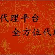 汩罗东本贵金属招商图片