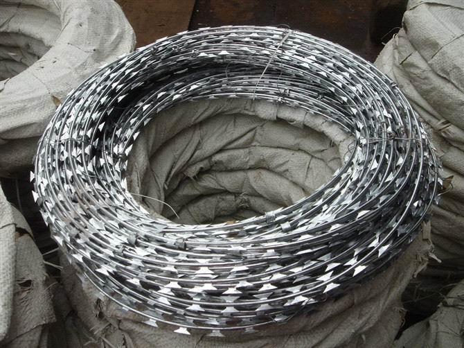 供应金属丝网刀片刺绳网