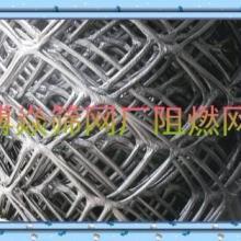 供应现货阻燃安全网 维纶阻燃网-尼龙防护网-高强防坠网-绳网带批发