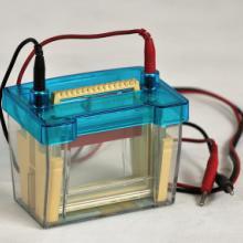 供应双垂直电泳槽中学专用生物实验仪器