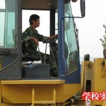 供应沧州附近哪个学校能学习开铲车、学装载机操作到哪里图片