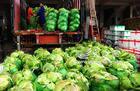 重庆蔬菜配送价格、价钱、报价【重庆昶疆源农业发展有限公司】