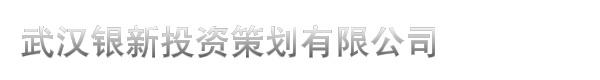武汉银新投资策划有限公司