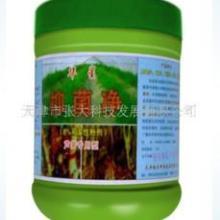 供應養殖消毒劑華星化工消毒粉1消毒片圖片