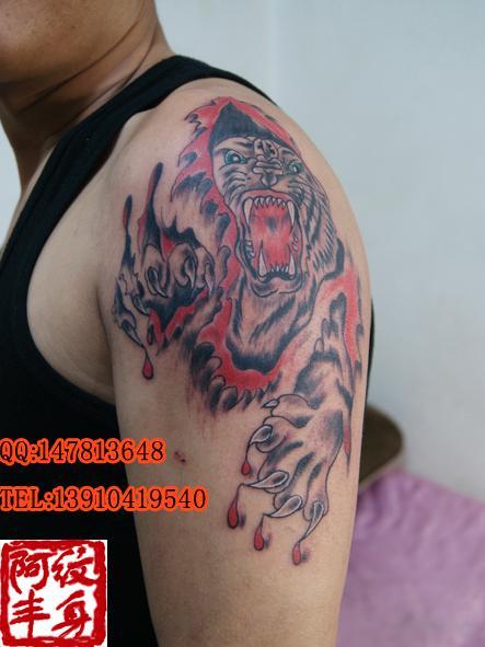 图案供应商/生产供应胳膊纹身图片老虎纹身图案-阿丰