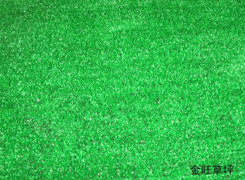 人造草坪草皮_无土草皮 草坪学_草皮和草坪