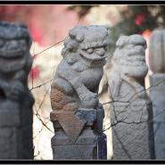 国家工艺师手工石雕拴马桩抱鼓井台图片