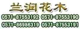 杭州准爪办公室绿化有限公司