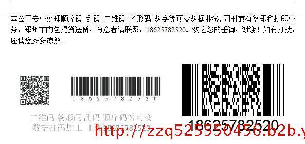 郑州国瑞可变数据打码公司
