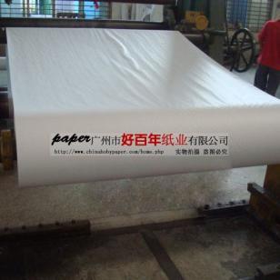 超白牛皮纸-广东白牛皮纸图片